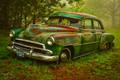Rusted Glory print
