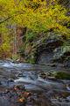 Fall on Cedar Creek print