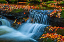 Fall 2015,Great Smokey Mountains,Middle Prong Little River,Tremount,water fall