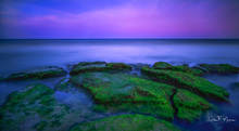 coastal, Coastal Photos of the Eastern Seabord Gallerie, Coquina Rocks, Evening Light, long exposure, North Carolina