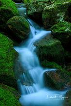 North Arkansas,boulders,moss rocks,spring,water flow