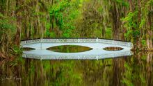 Magnolia Plantation, Charleston SC.  The long White Bridge