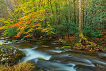 Fall 2015,Great Smokey Mountains,Middle Prong Little River,Tremount,rivers streams and waterfalls gallery