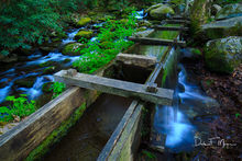 Old Flume,Reagans Mill,Roaring Fork,Smoky Mountains,Spring 2013