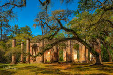 Old Sheldon Church Ruins, Southern Places Gallery, Yemassee SC