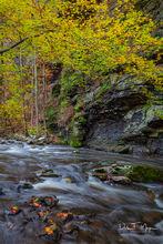 Cedar Creek, Fall 2018, Petit Jean Mountain, River Streams and Waterfalls Gallery