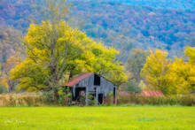 Fall 2018, Old barn, Ponca Arkansas, time gone by gallery