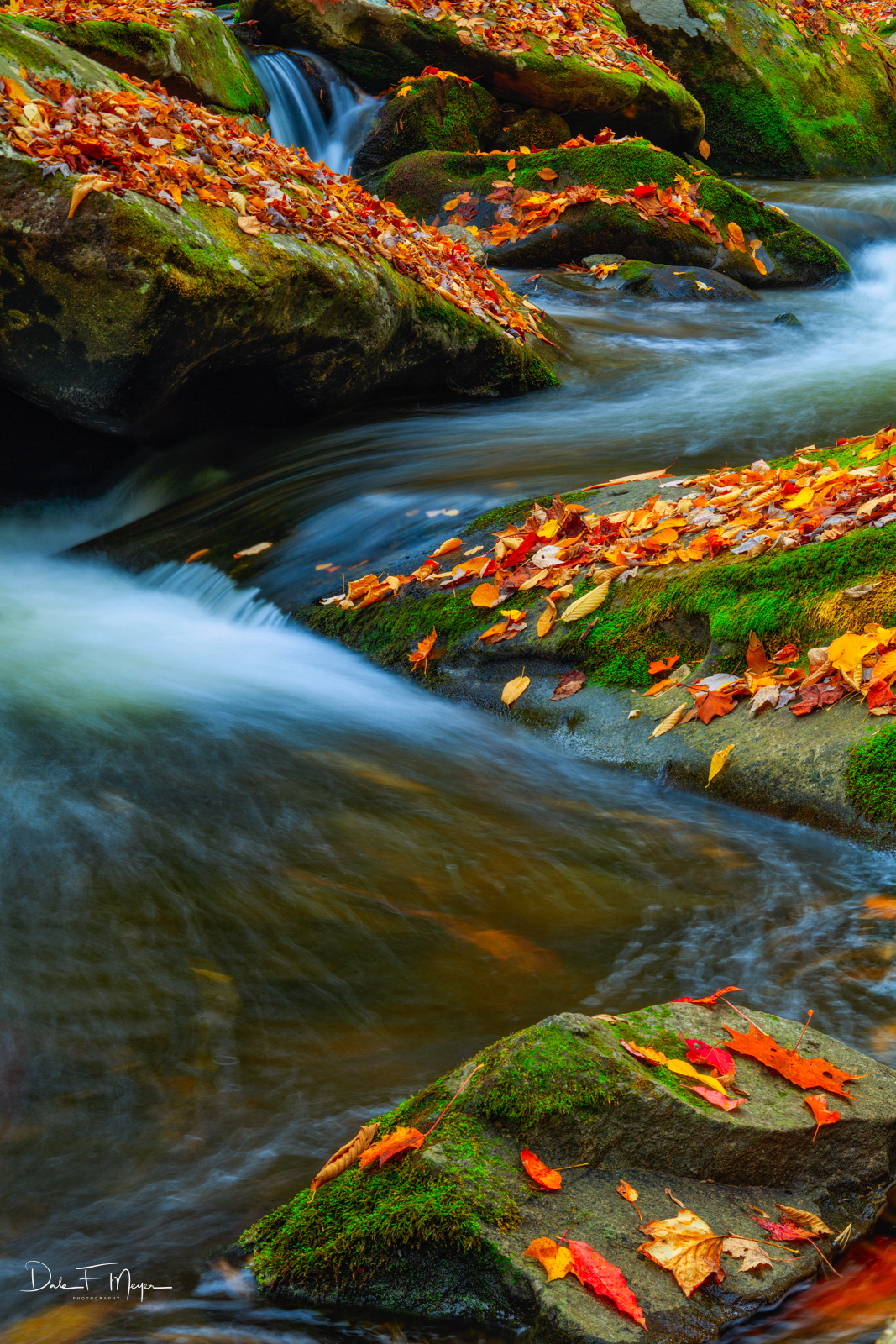 A beautiful flow of water on the Middle Prong Little River after leaf Fall. The leafs are only there for a short while until...