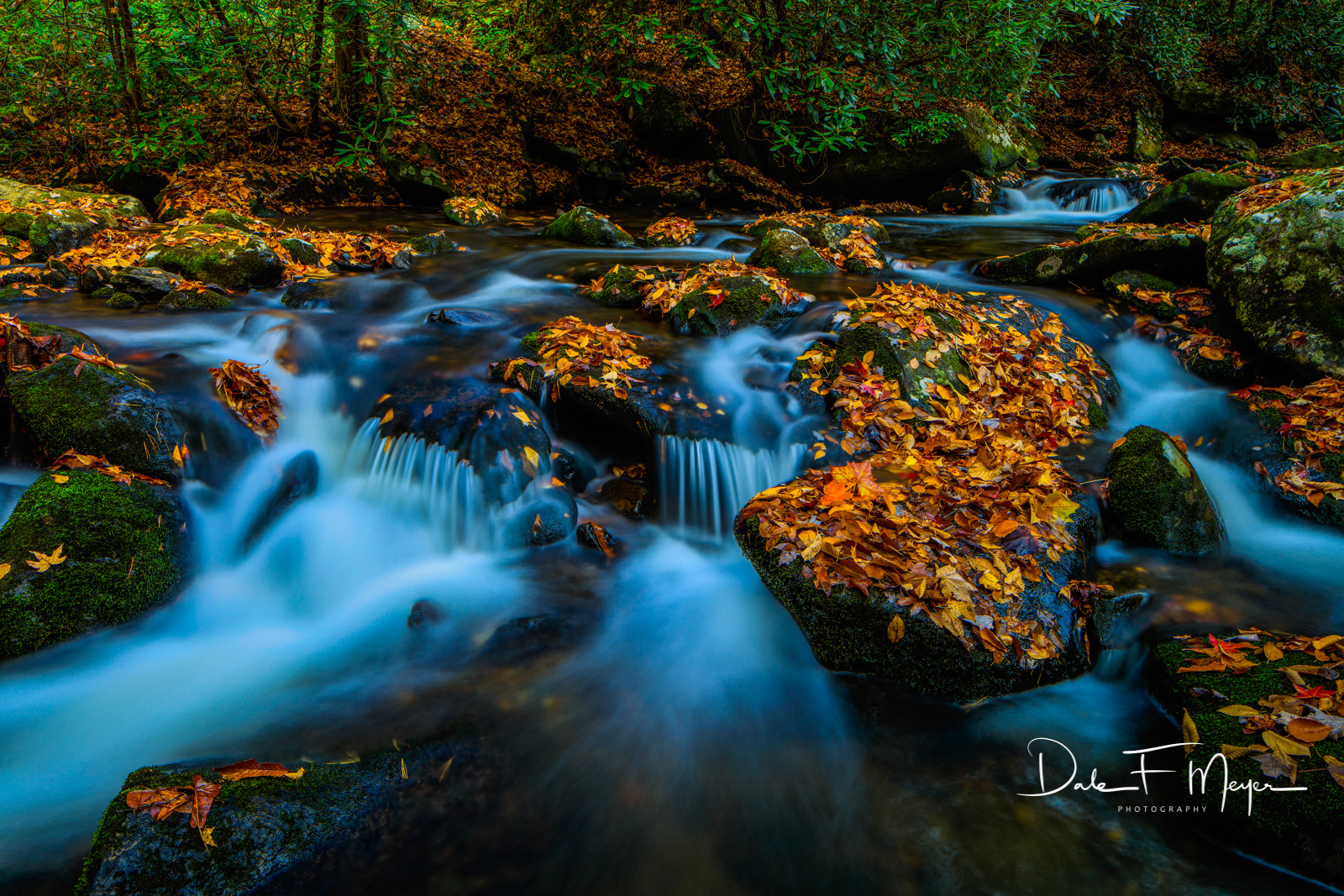 Fall 2015,Great Smokey Mountains,Middle Prong Little River,Tremount Area