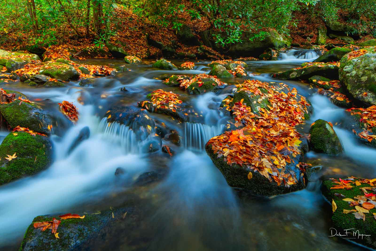 Leaf Fall and a beautiful flow of crystal clear water through leaf coveredstones and boulders on the Middle Prong of the...