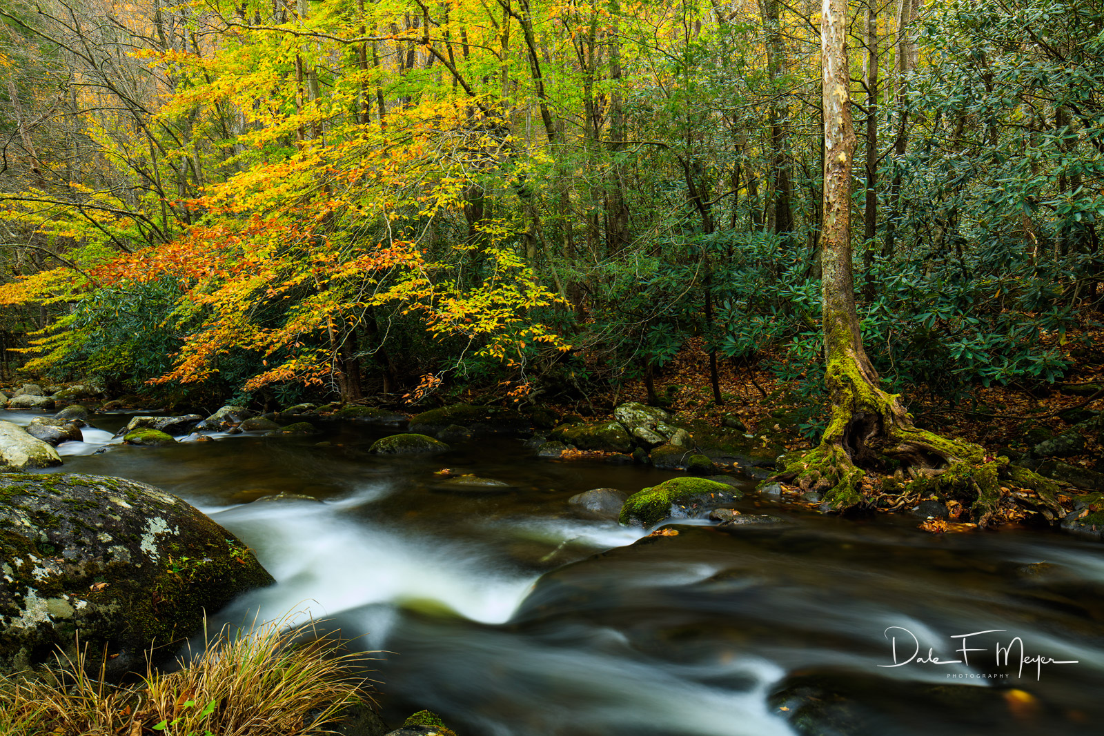 Fall 2015,Great Smokey Mountains,Middle Prong Little River,Tremount,rivers streams and waterfalls gallerie, photo