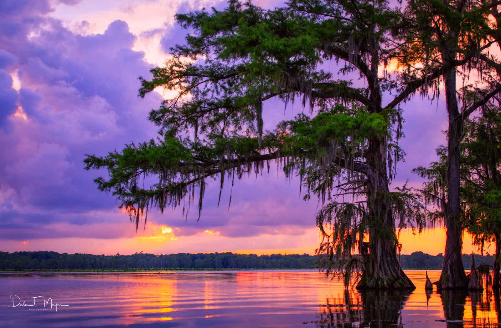 Atchafalaya River Basin Swamp, Southern Places Gallery, Sunset, photo
