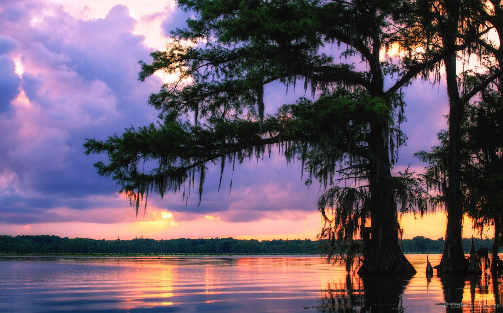 Atchafalaya River Basin Swamp, Southern Places Galerie, Summer 2016, Sunset and clouds, Swamp, cypress trees