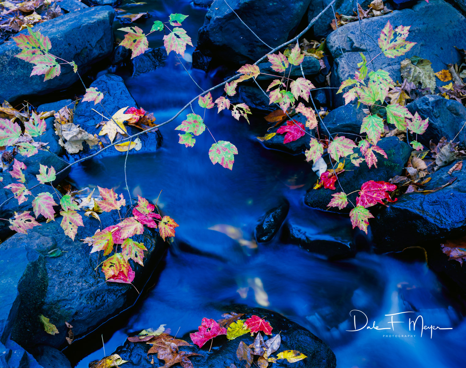 Buffalo River North Arkansas,Upper Buffalo Wilderness Area,fall,rocks and running water, Leafs, Scanned Large Format 4x5 Fuji 50 Velvia., photo