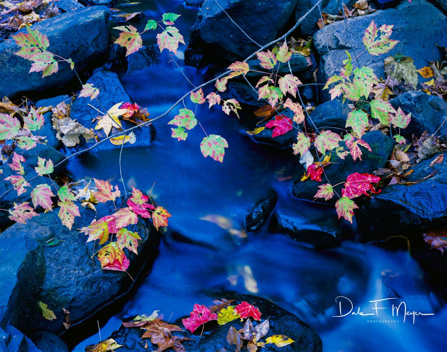 Buffalo River North Arkansas,Upper Buffalo Wilderness Area,fall,rocks and running water, Leafs, Scanned Large Format 4x5 Fuji 50 Velvia., photo