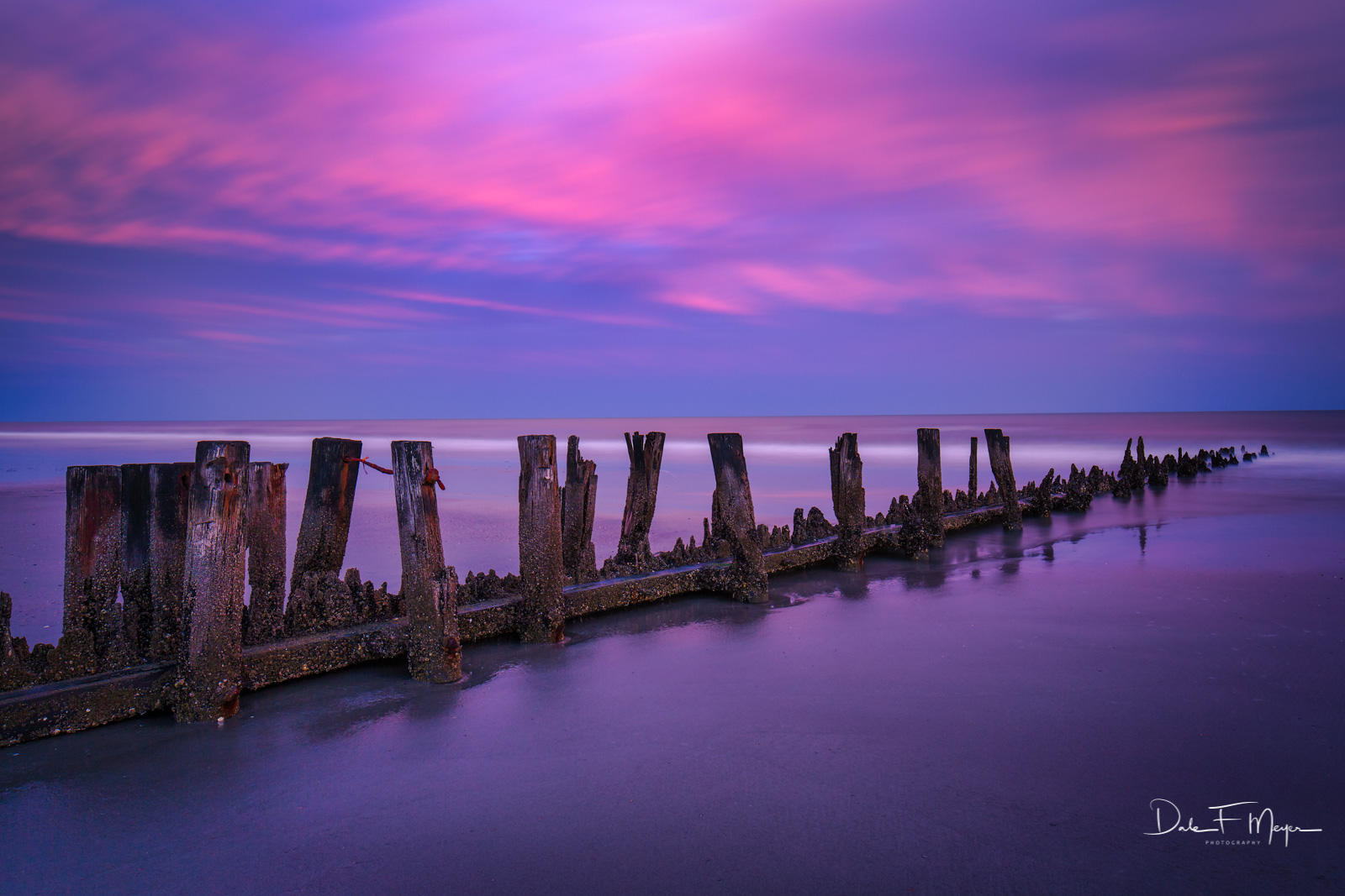 Low Tide, Folly Beach North Carolina with an old worn wood Jetty and sunset glow. Parts of this Jetty almost appear as coral...