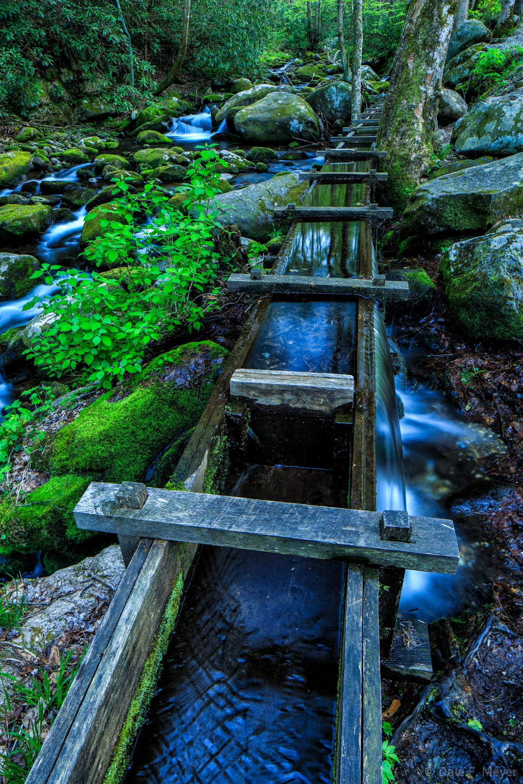 Great Smoky Mountains,Reagans Mill,Roaring Fork,Spring 2013,the old flume, photo