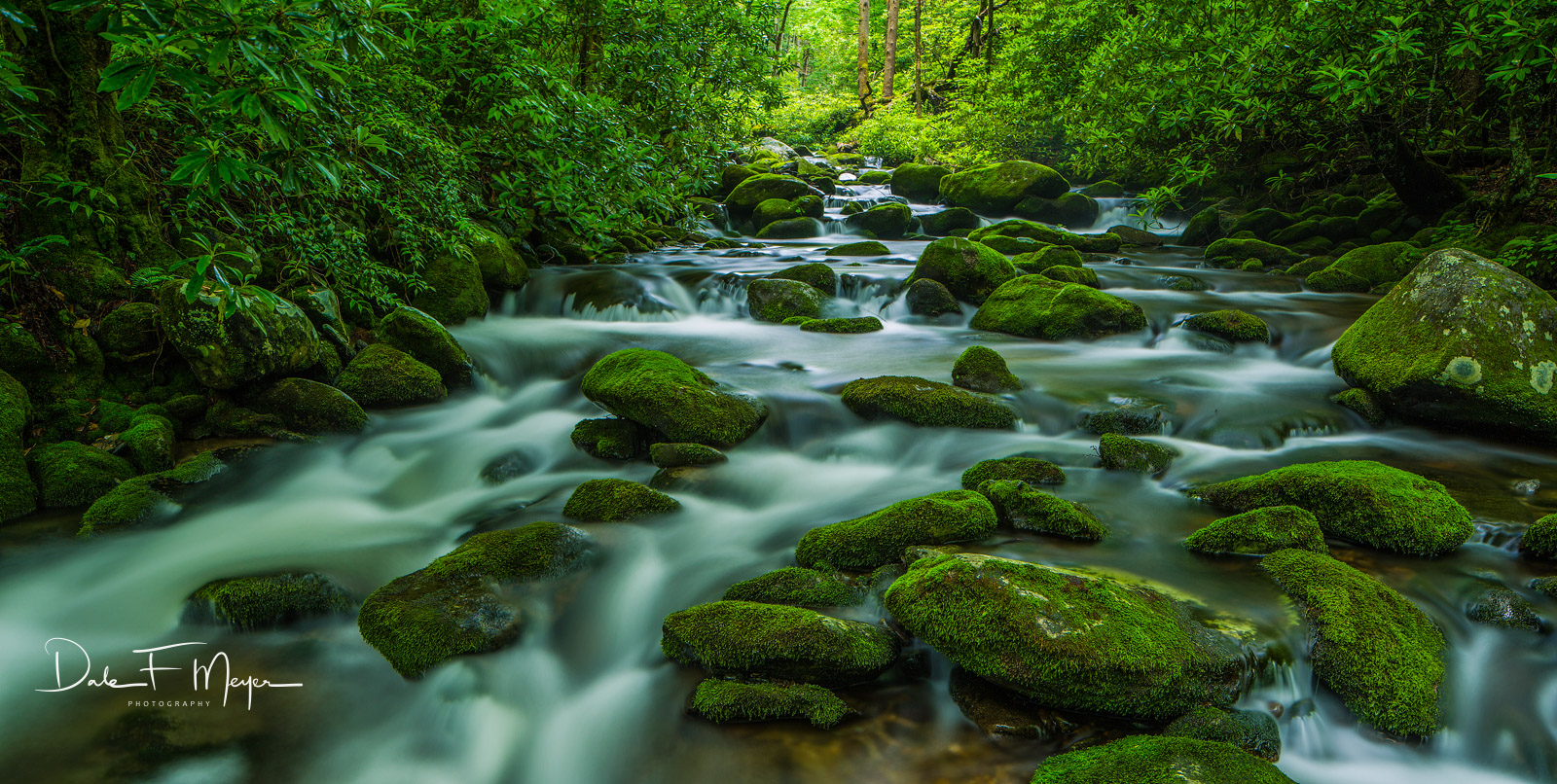 Great Smoky Mountains,Roaring Fork,Spring 2013,moss rocks,running water, photo