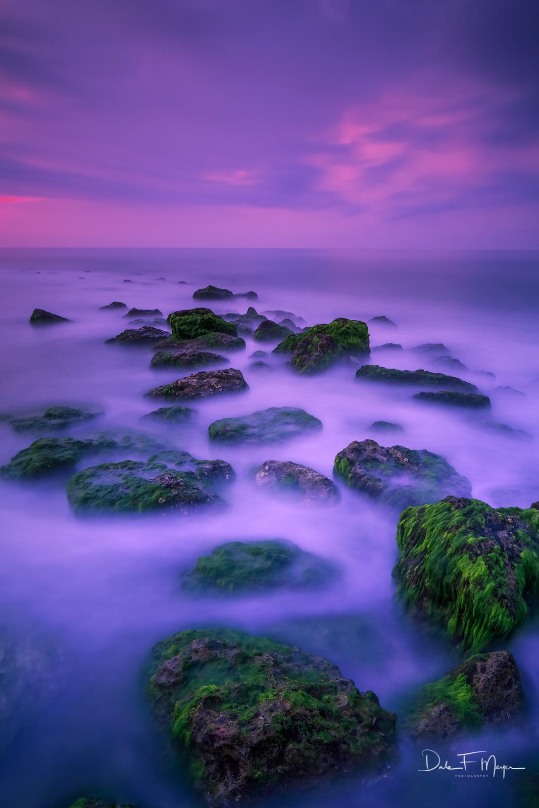 High Tide,Morning Light,Old Jetty,Sea Moss,long exposure,rocks, photo