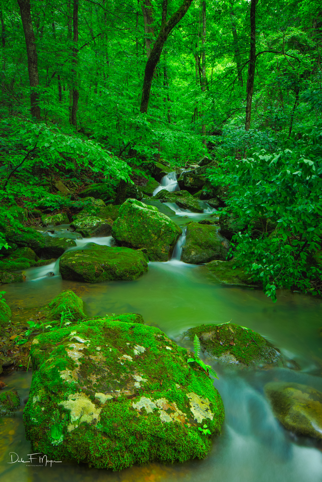 North Arkansas,falling water road,mossy boulder,spring 2015,wooded creek, photo