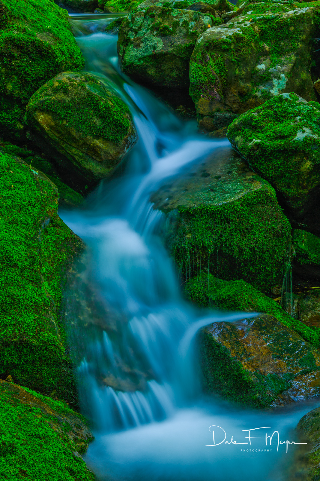 North Arkansas,boulders,moss rocks,spring,water flow, photo