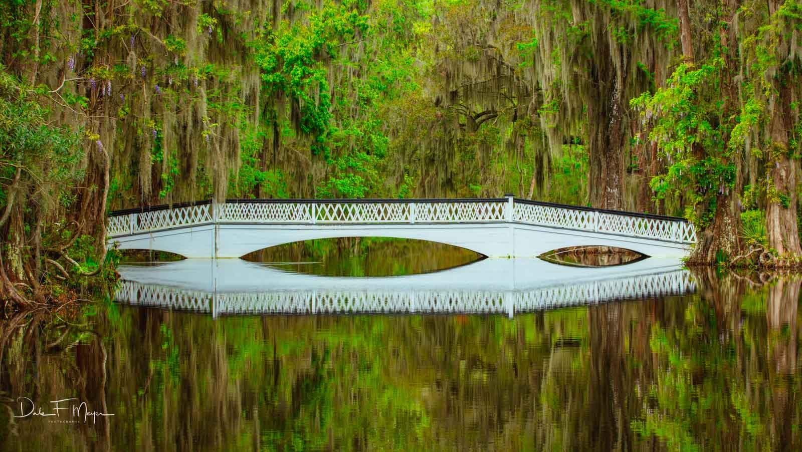 Magnolia Plantation, Charleston SC.  The long White Bridge, photo