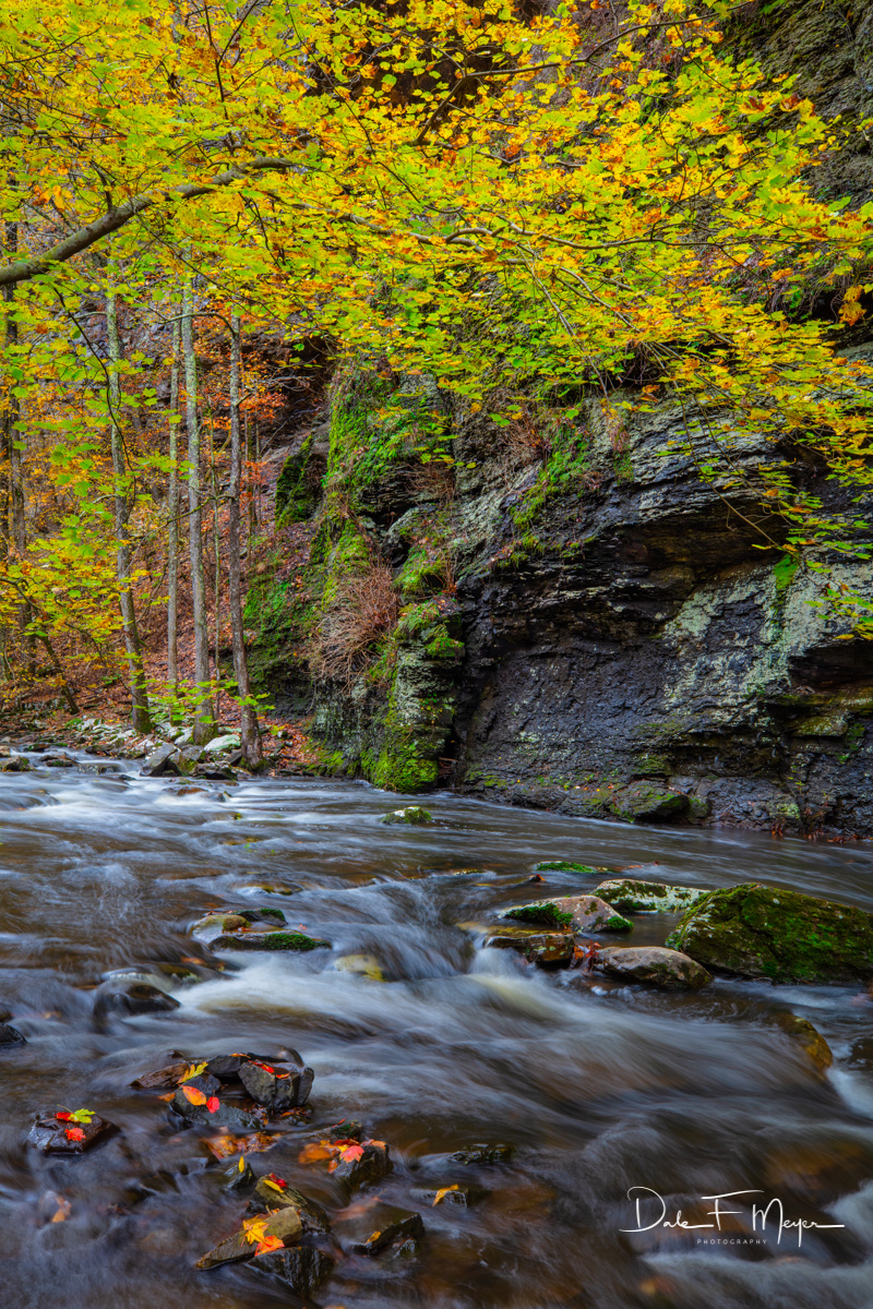 Fall is one of our most beautiful but shortest seasons in Arkansas, and with so many beautiful places to visit it is often best...