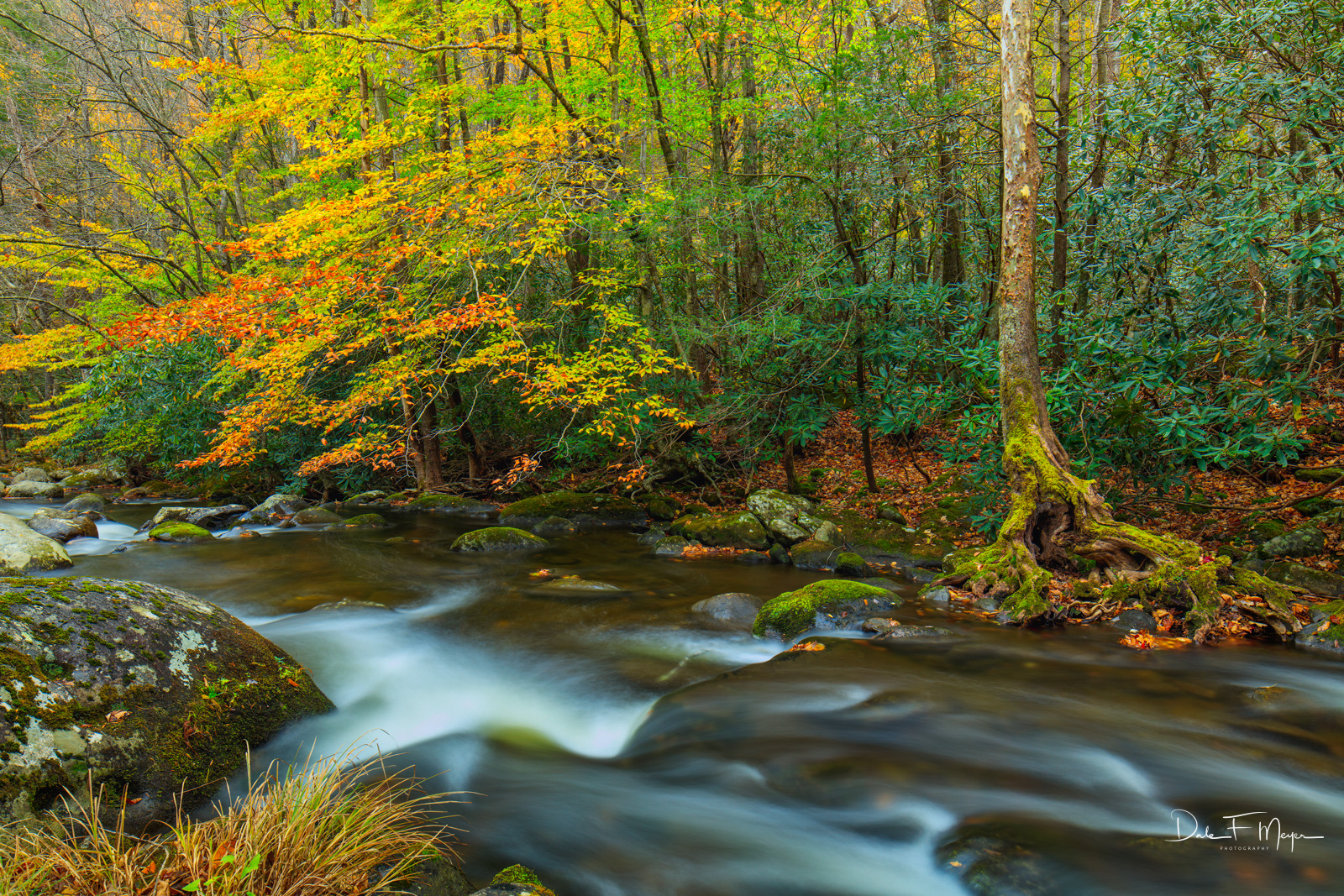Fall 2015,Great Smokey Mountains,Middle Prong Little River,Tremount,rivers streams and waterfalls gallery, photo