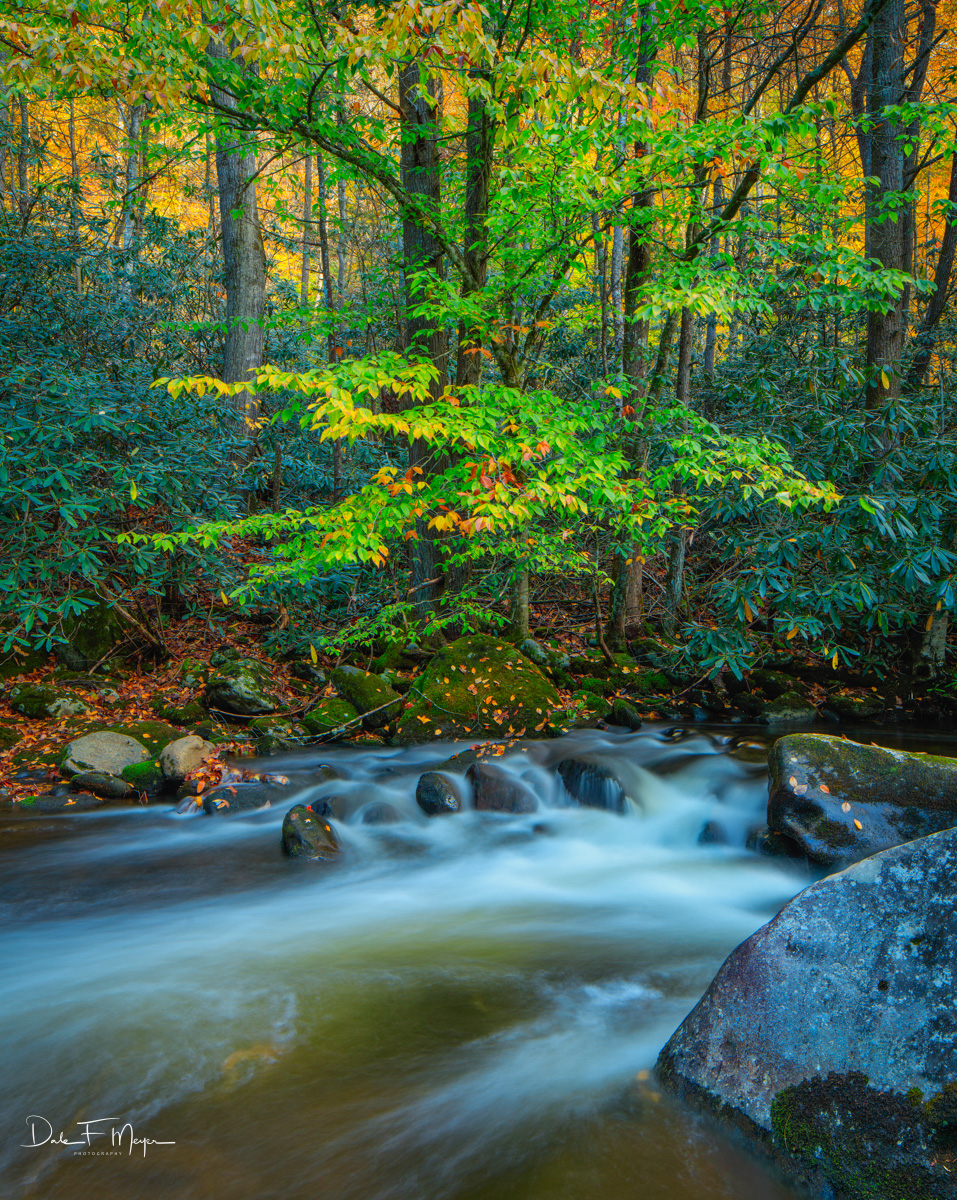 Middle Prong of the Little River, Tremount in the Great Smokey Mountains of Tennessee. Fall in this place is simply awesome!&...