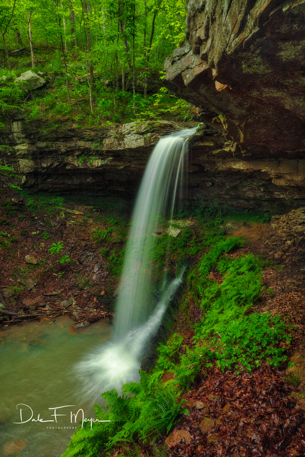 Mule Trail Falls in the Upper Buffalo Wilderness Region of Arkansas. In the 1800's there was a mule trail that can still be seen...
