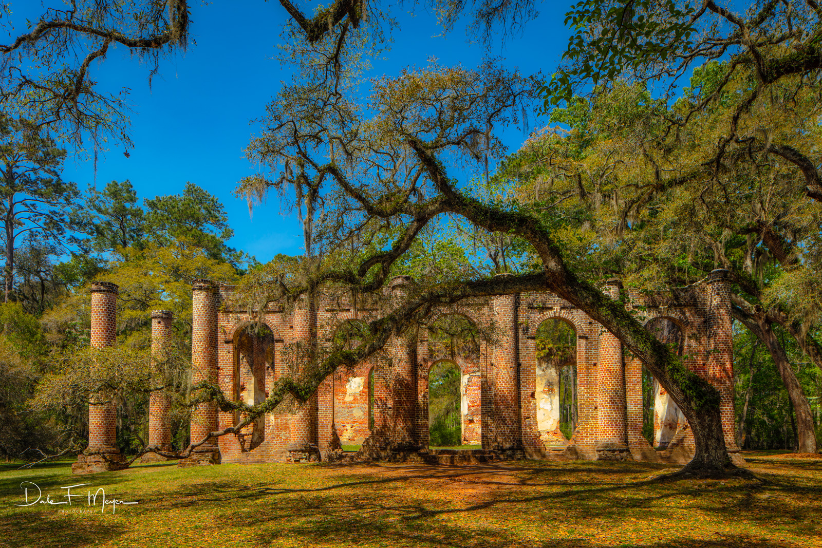 The Old Sheldon Church Ruins in the heart of the South Carolina low country. This church had its first service in 1757, and in...