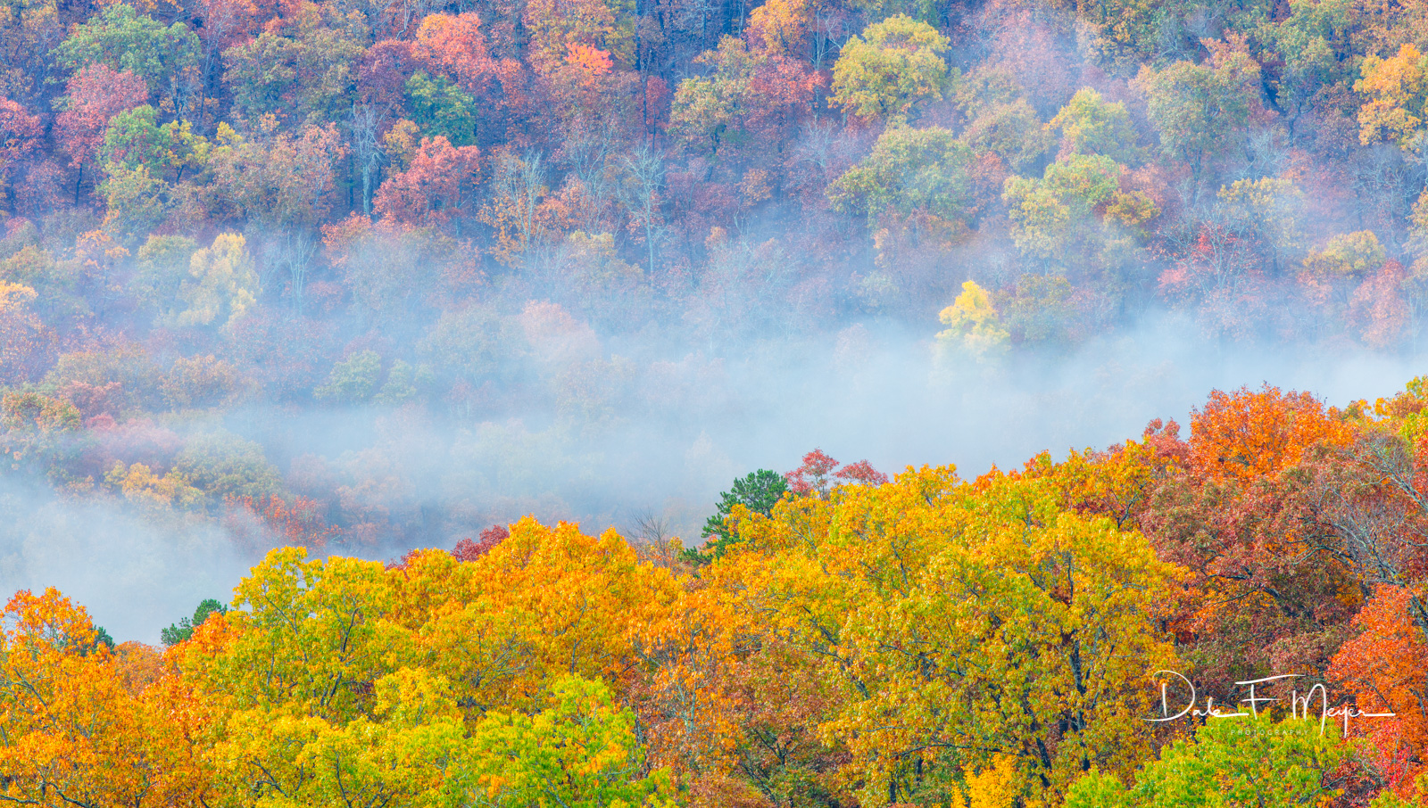 Early Morning Light., Fall 2018, Misty Fog, Ozark national forest., photo