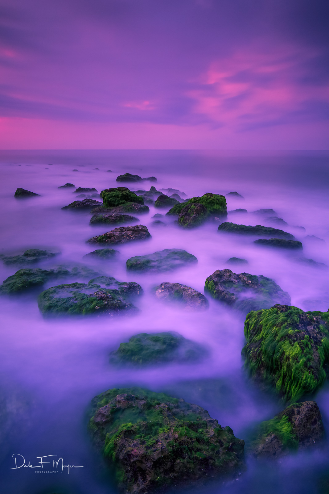 High Tide,Morning Light,Old Jetty,Sea Moss,long exposure,rocks, photo