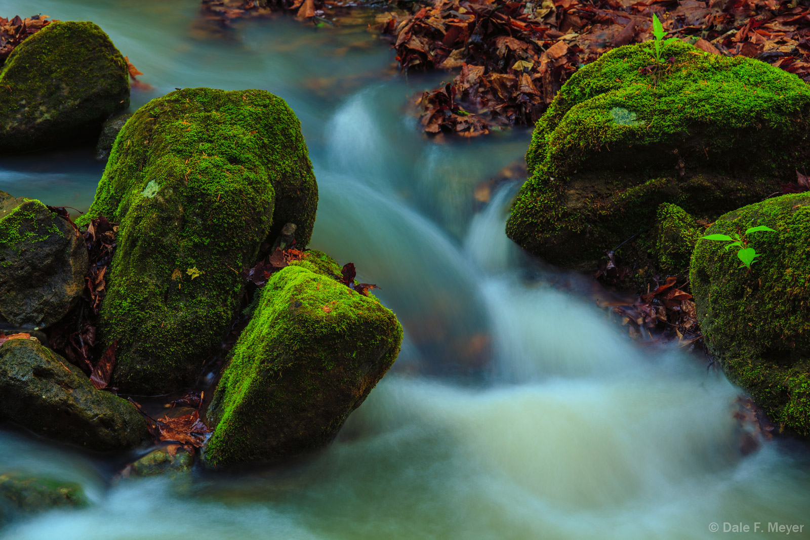 Smith Creek Ar,Smith creek,rocks,running water,streams, photo