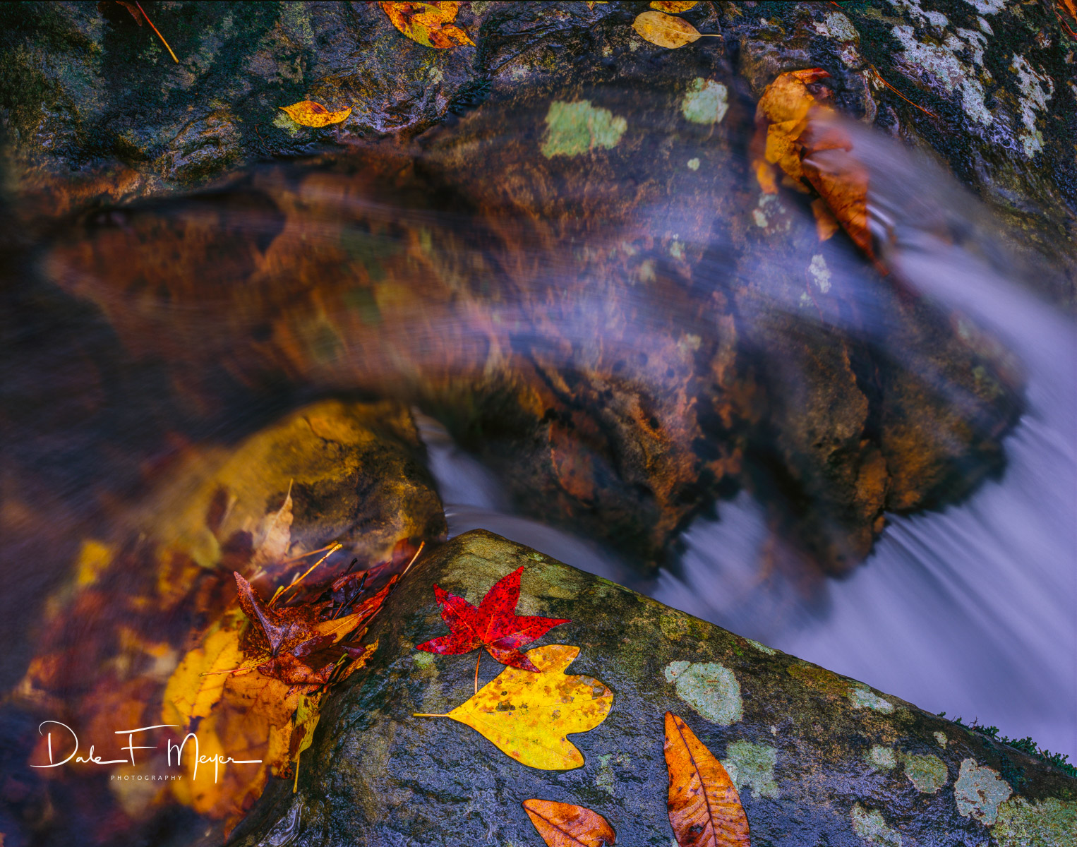 Buffalo River North Arkansas,Fast Water,fall,leafs,rocks and water,running water, Scanned Large Format 4x5 fuji 50 Velvia., photo