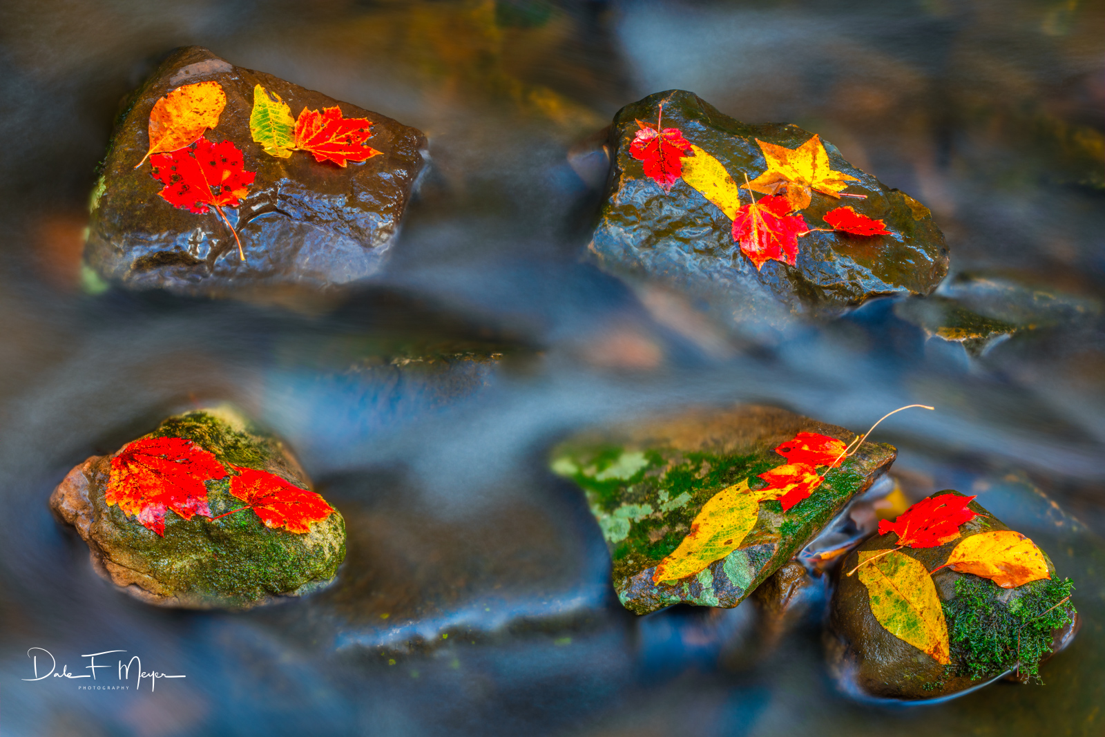 Fall 2018, River Streams and Waterfalls Gallery, buffalo National river, fall, leafs, rocks and running water, photo