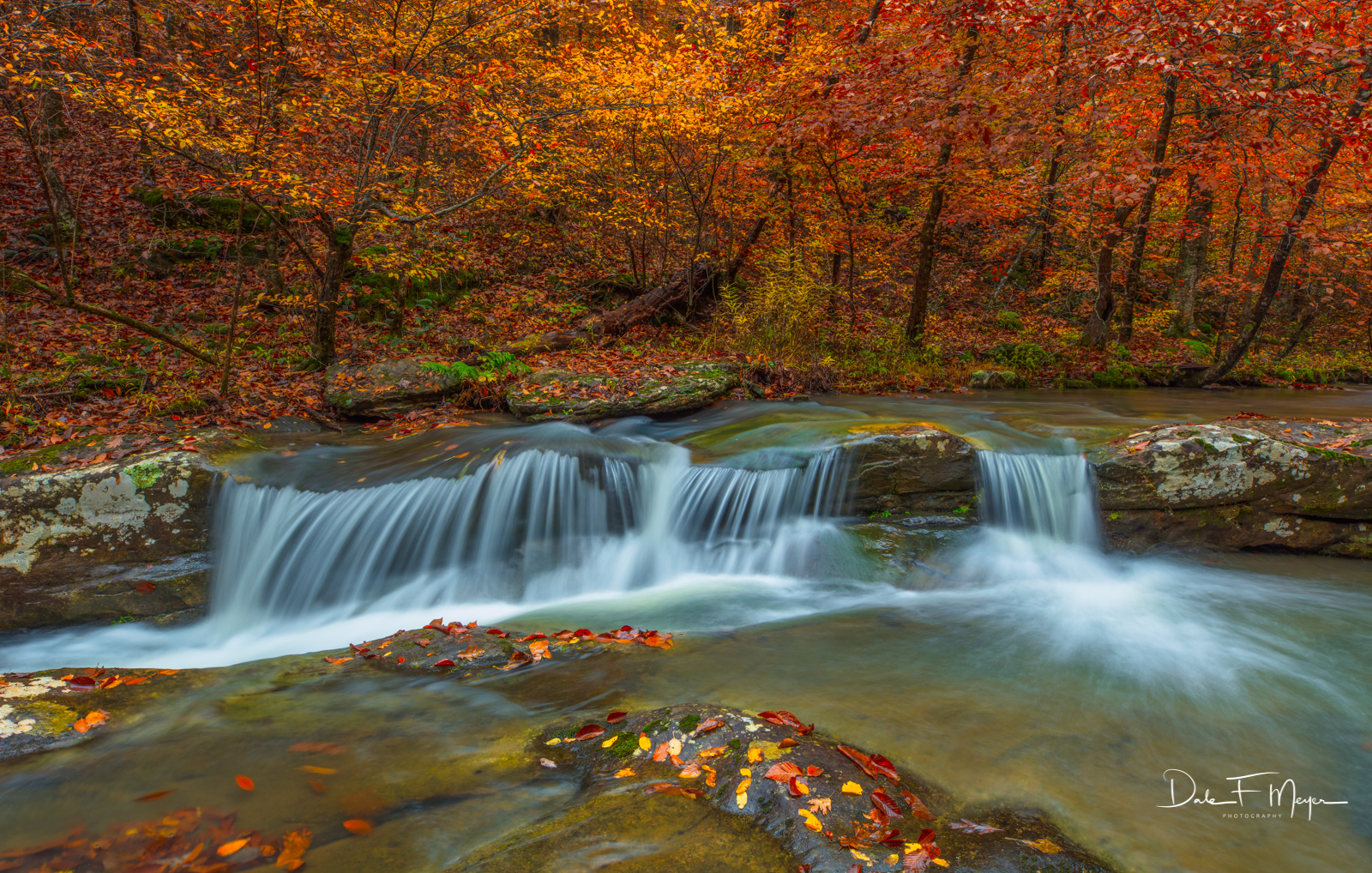 A rare and fleeting combination of beautiful Fall color and water flow on Whitaker Creek near Comptons Falls in the Upper Buffalo...
