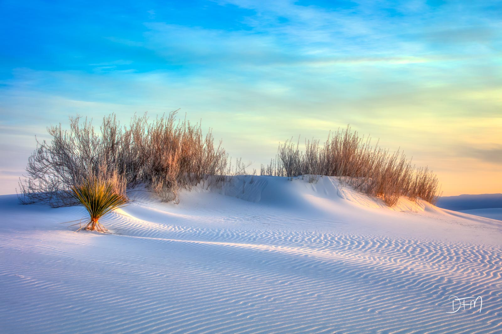 White Sands National Park, New Mexico, Sunset and Grasses, photo