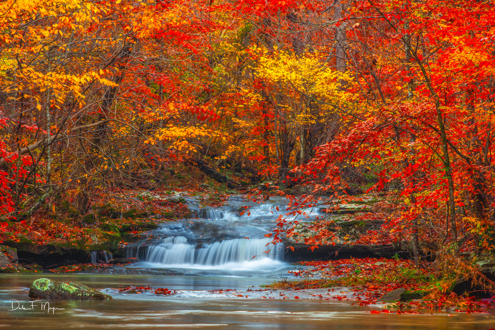 Taken on Whitaker Creek in the Upper Buffalo Wilderness Area of Arkansas, and captivated to experienceone of the most beautiful...