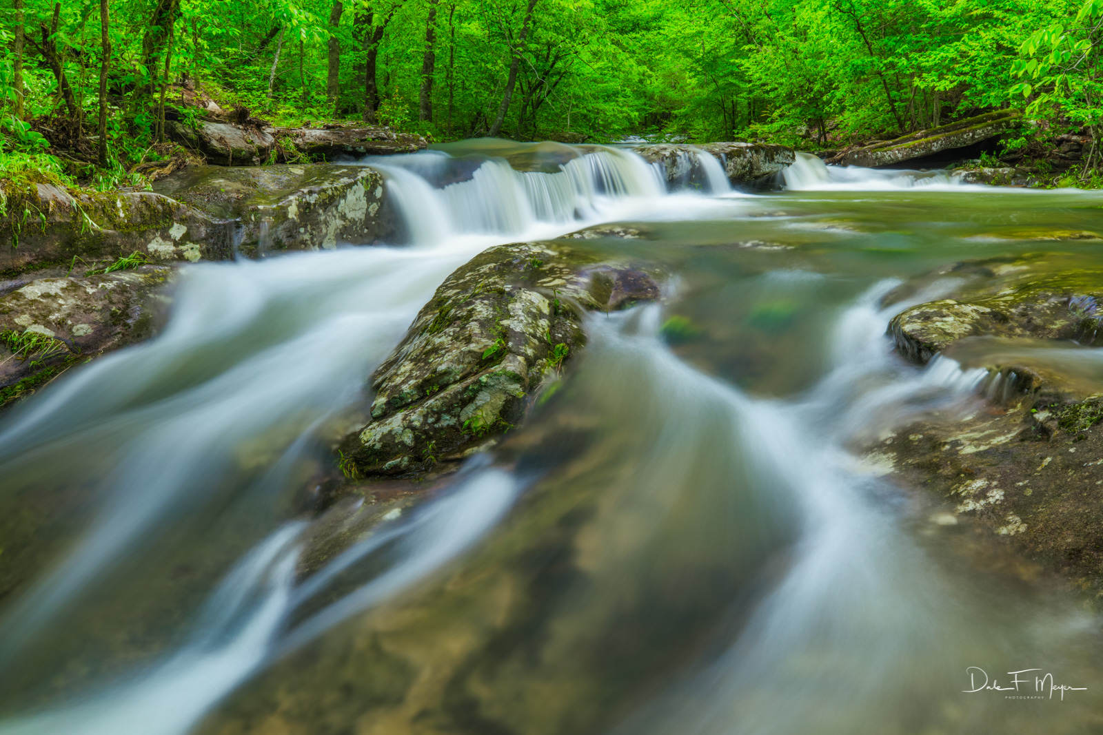 Spring in a favorite place of mine on Whitaker Creek in the Upper Buffalo Wilderness Area of the Ozark National Forest.  This...
