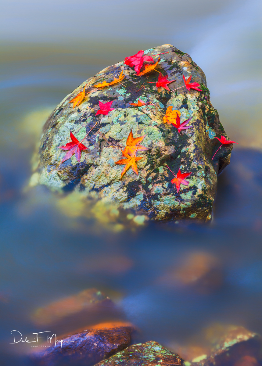 Cedar Creek,fall leafs,petit jean,rivers streams and waterfalls gallery,rocks,running water, photo
