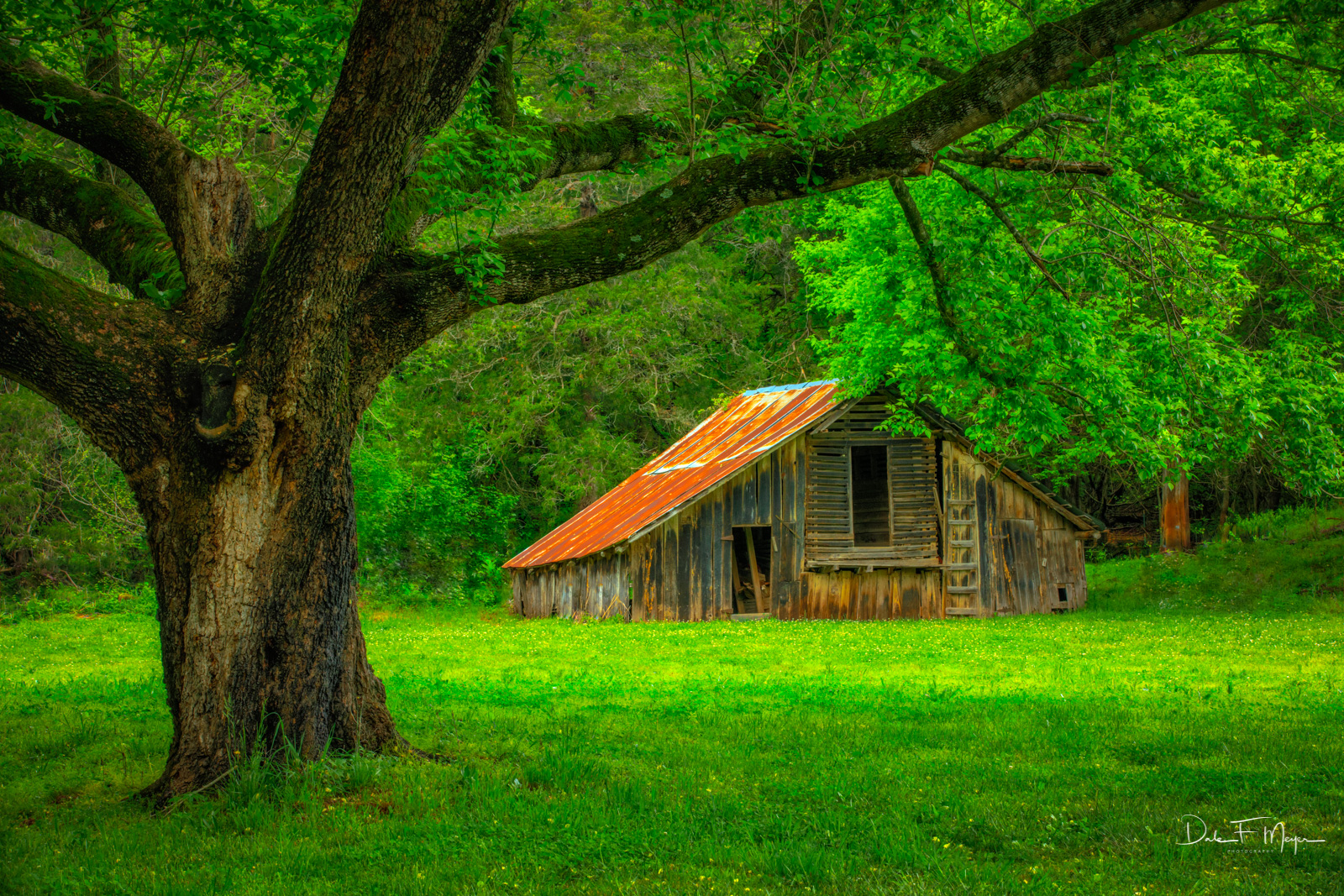 Barn in the Boxley Valley of North Arkansas. The owner of this property was gracious to allow me to photograph this old gem....