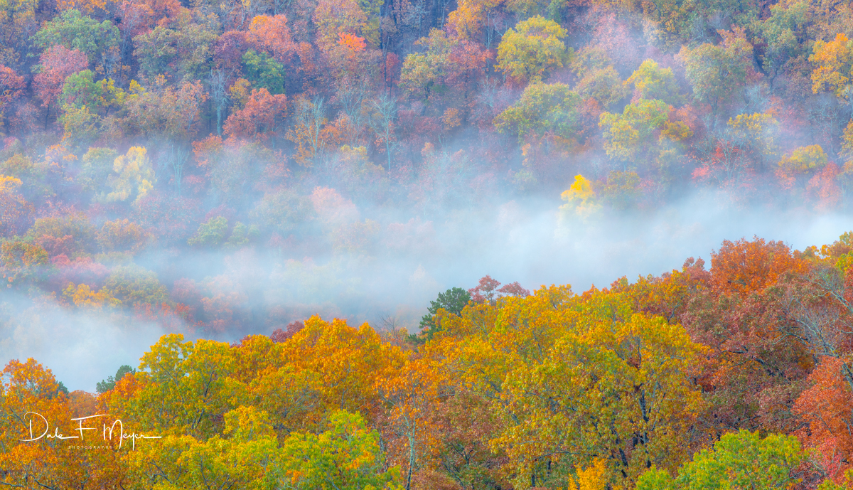 Early Morning light, with brilliant Fall color and misty clouds rising up from the valleys of the Ozark Mountains near Pedestal...