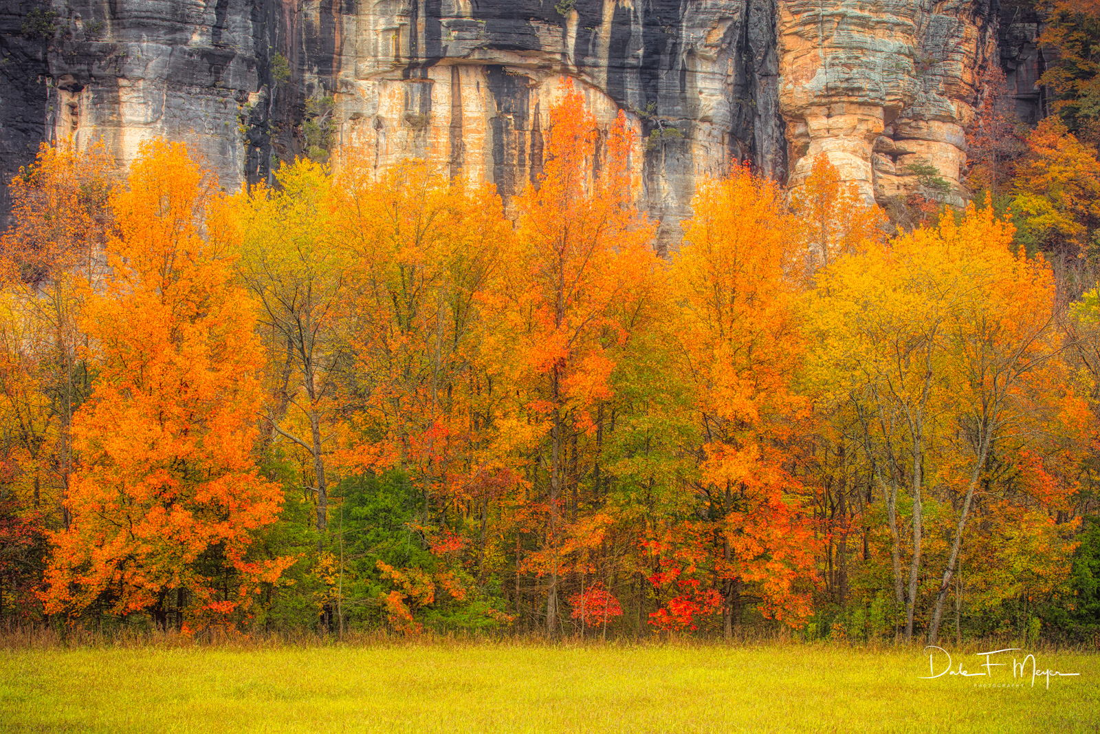 Roarks Bluff adorned in fall color atthe junction of Steel Creek and the Buffalo River in Northwest Arkansas. This bluff...
