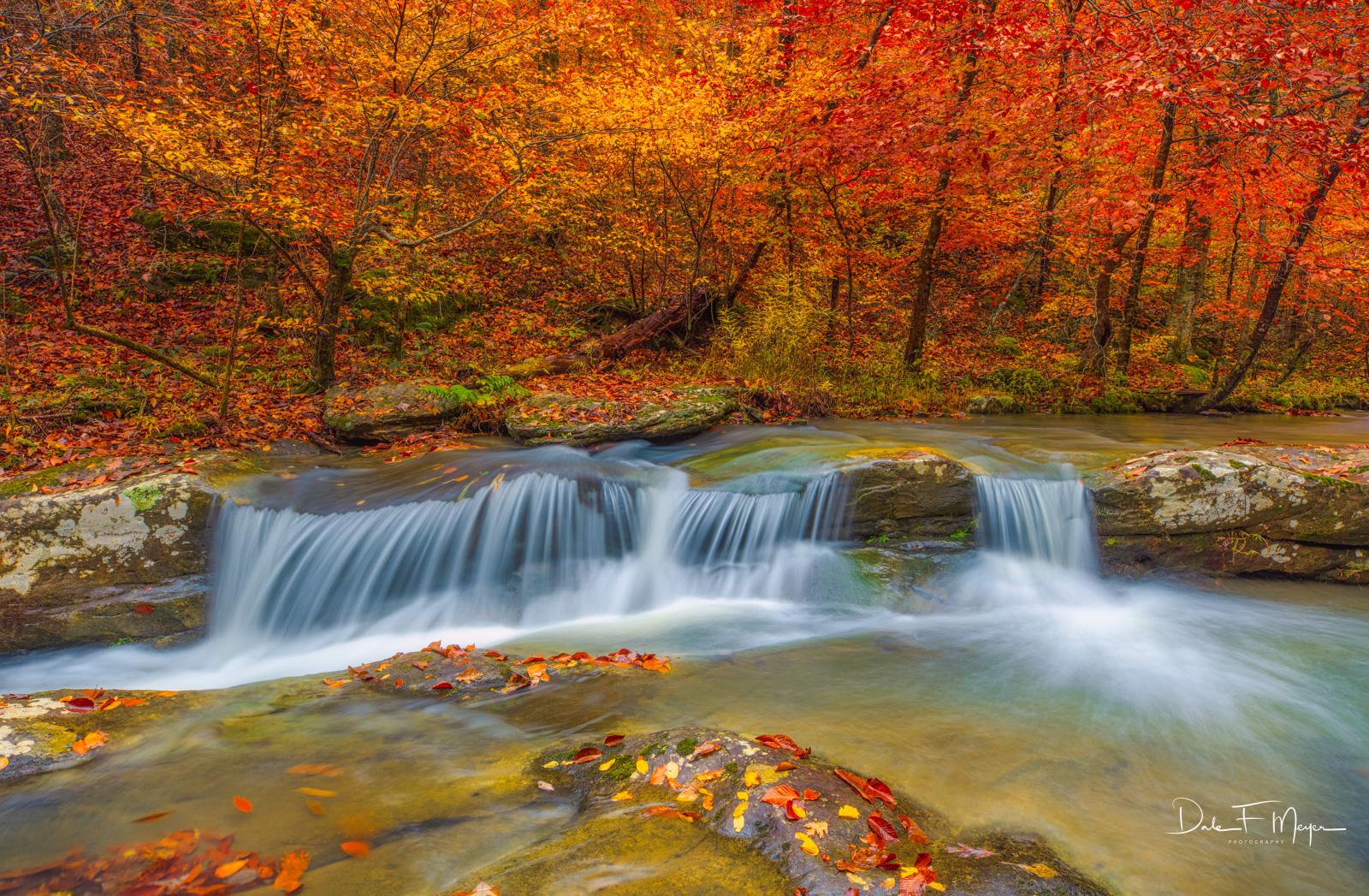 A rare and fleeting combination of beautiful Fall color and water flow on Whitaker Creek in the Upper Buffalo Wilderness Area...