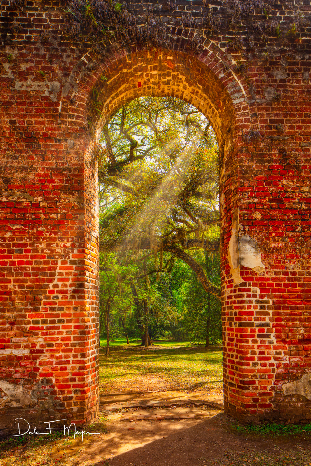 A bright day with sunlight streaming in theMain Door Way of the Old Sheldon Church Ruinsin the heart of the South...